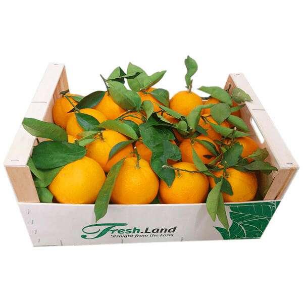 DELUXE-Appelsin-3