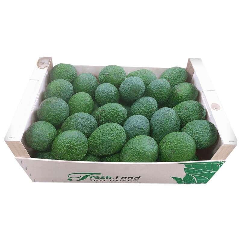 Avocados-4