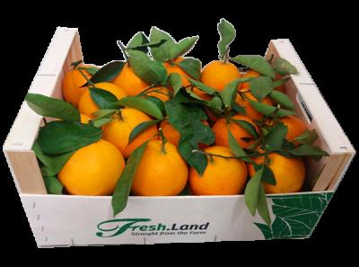 DELUXE-Appelsin