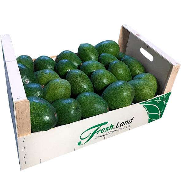 reed-avocado-box-freshland