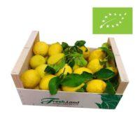 Oko-Lemons