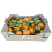 mandarin-nugget-freshland
