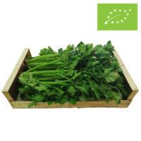 Vores øko sellerikasse med 4-5 store kvalitetsbundter af bladselleri velegnet til Sellerijuice