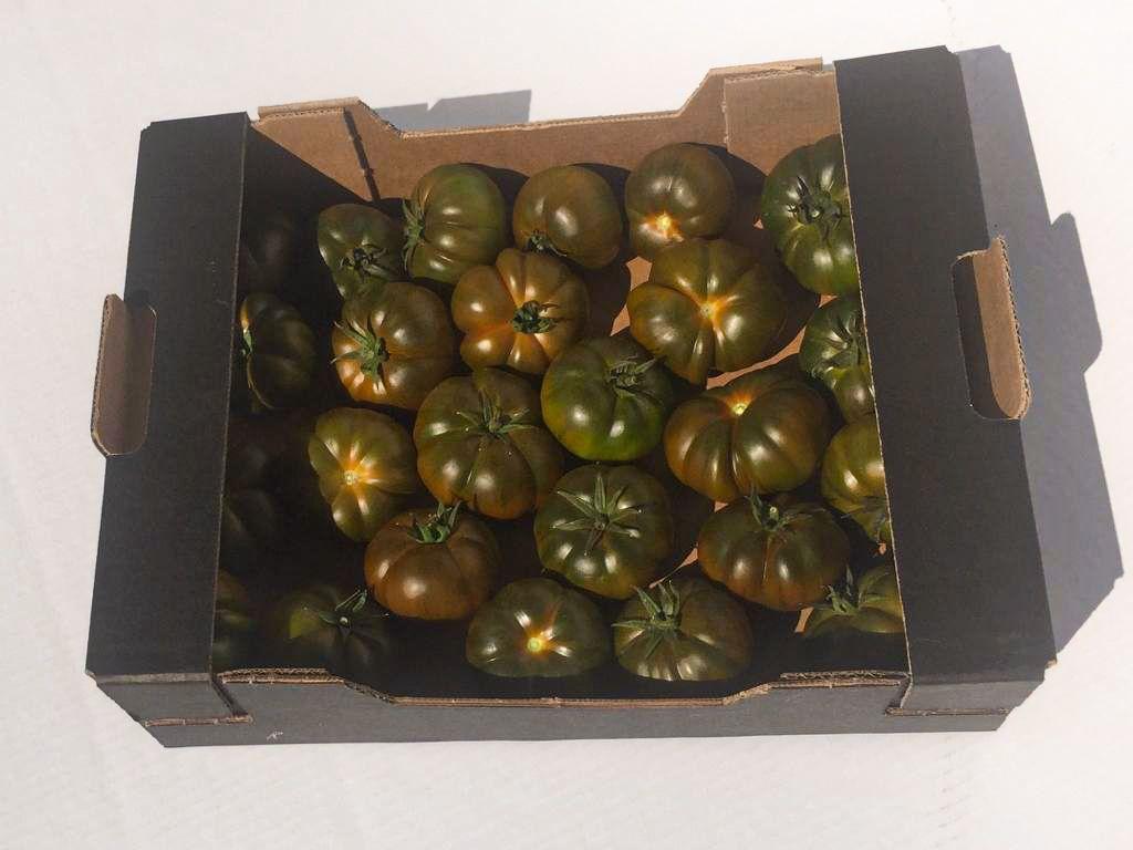 """Vores Øko Tomatkasse (3kg) med chokoladebrune, grønne, røde og sorte tomater af sorten """"Perla Negra"""""""