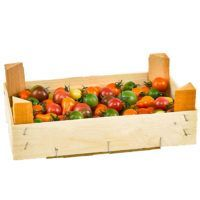 gourmet-cherrytomat-fresh-land