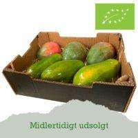 mango-papaya-outofstock