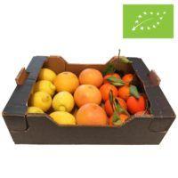 oeko-citrus-kassen