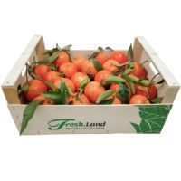 appelsin-deluxe-freshland