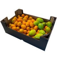 deluxe_kumquat_limequat copy