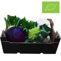 Valencia-grøntsagskasse