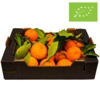 øko-bitter-appelsin-2021-CE