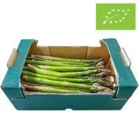øko-grønne-asparges-PT1